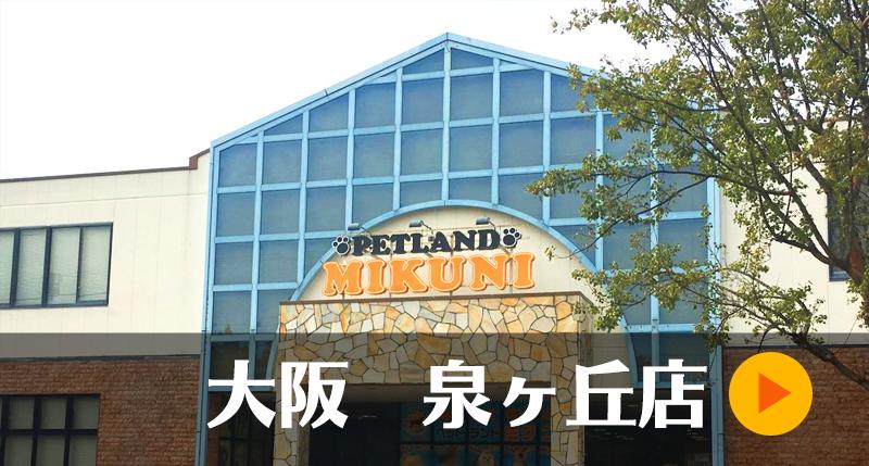 大阪泉ヶ丘店